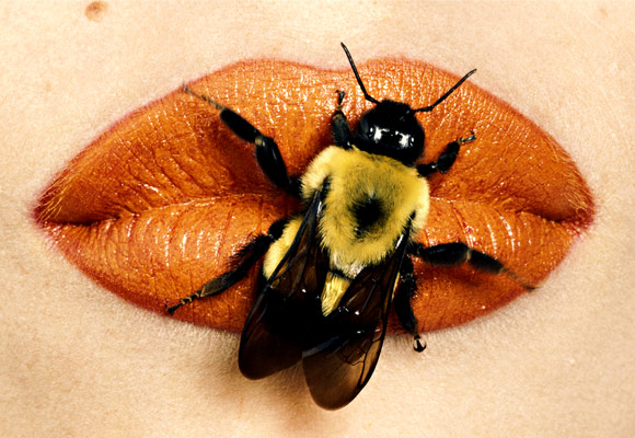 Irving Penn, Bee on Lips, December 1995