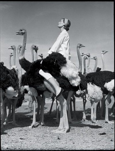 Norman Parkinson Vogue